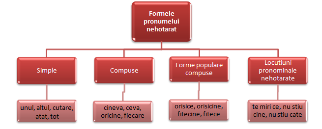 formele pronumelui nehotarat