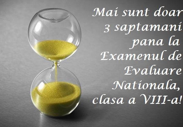 evaluare nationala clasa 8